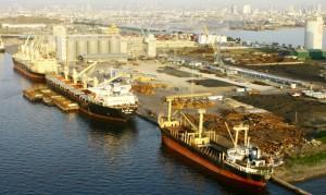 harbour front port terminal 2